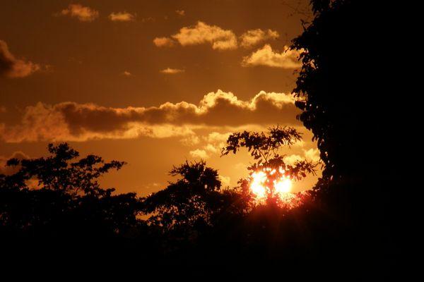 couché de soleil à punta cana(république dominicaine)