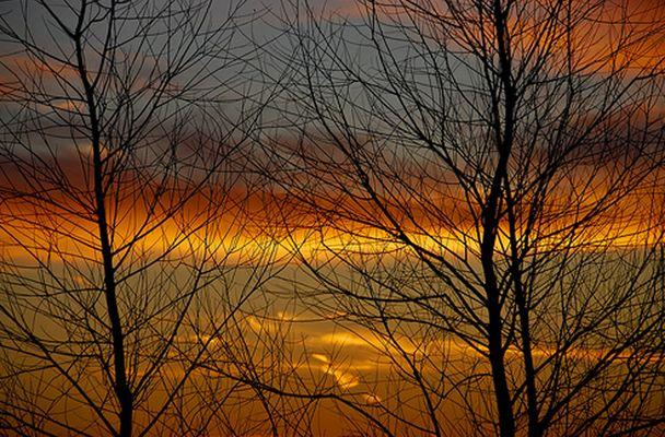 Couché de soleil en automne (sologne sept 2008)