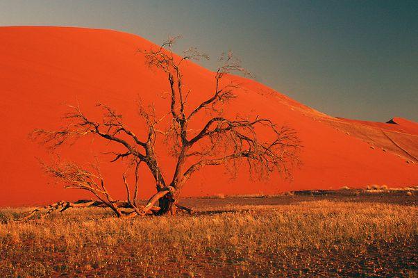 couché de soleil sur les dunes du désert du Namib
