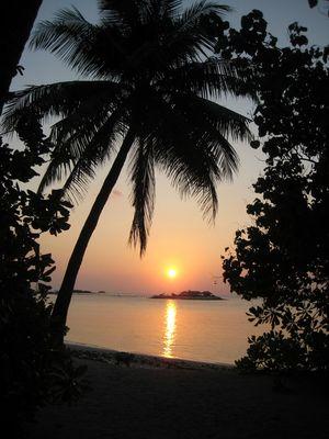 Couché de soleil sur un Eden...