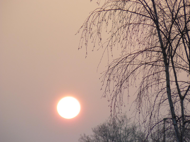 Couché du soleil un soir d'hiver