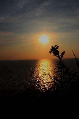coucher de soleil a la plage