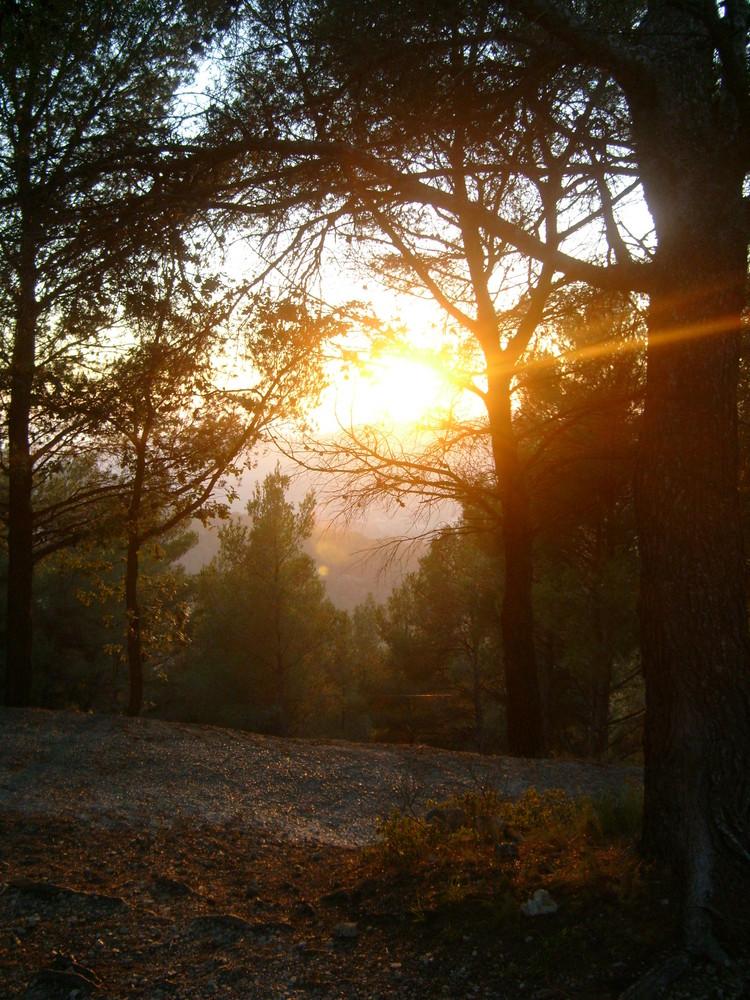 Coucher de soleil dans le sud