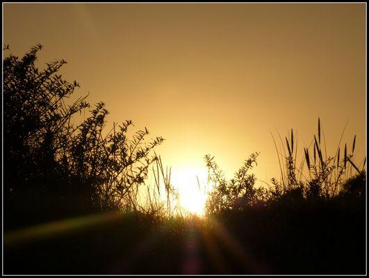 coucher de soleil derriere les dunes