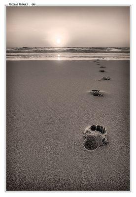 Coucher de soleil en noir et blanc à Seignosse (Landes)