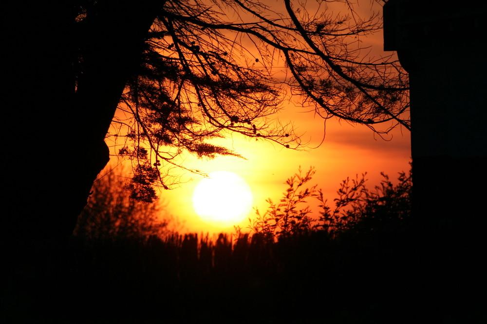 coucher de soleil entre nature et beton