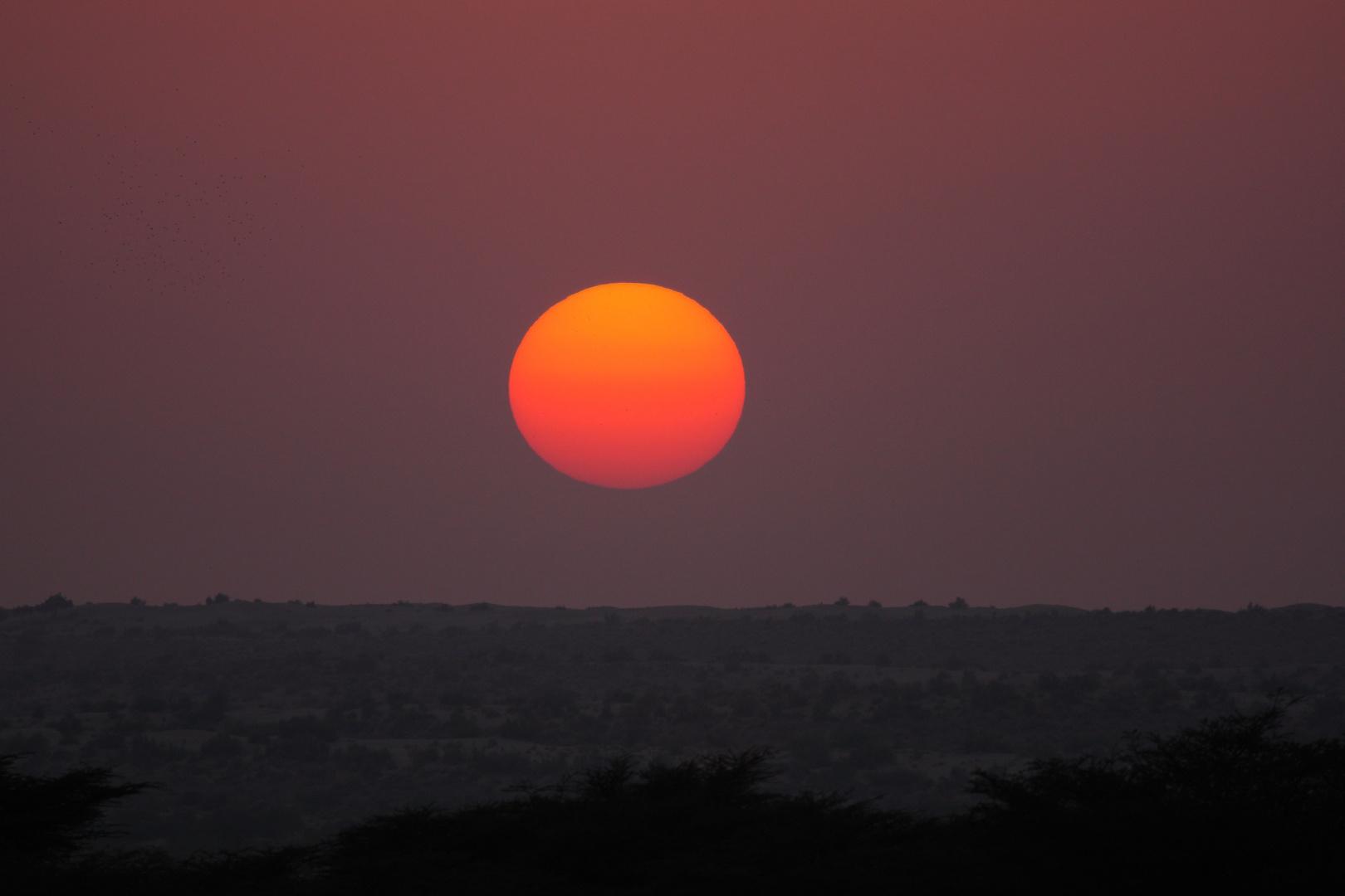 Coucher de soleil près de Jaisalmer, Rajasthan.