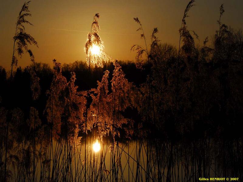 Coucher de soleil sur étang