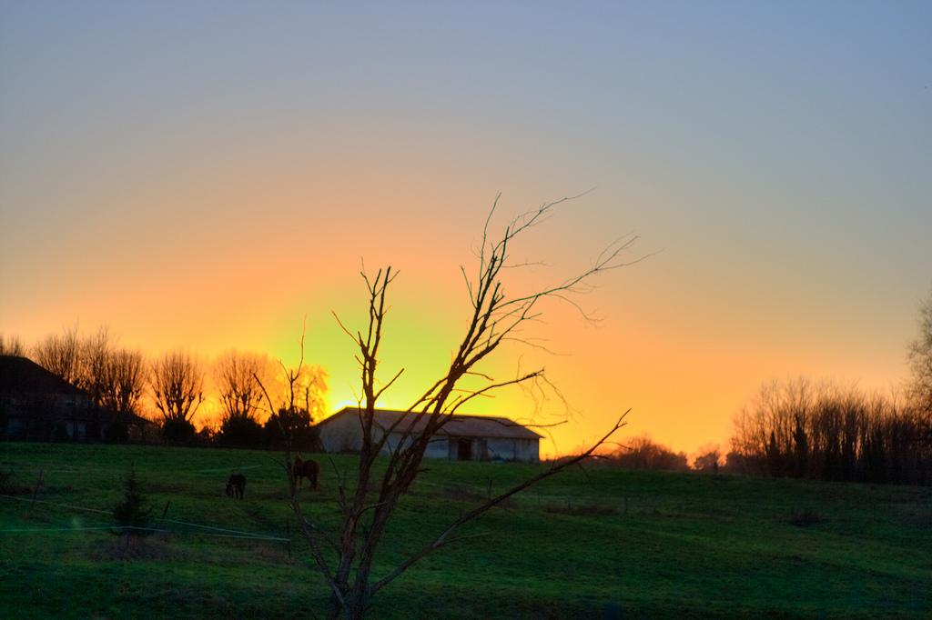 Coucher de soleil sur la ferme