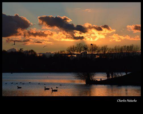 Coucher de soleil sur le lac du héron, Villeneuve d' Ascq.