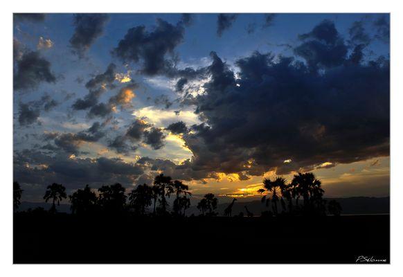 Coucher de soleil sur le lac Manyara