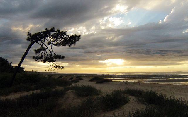 Coucher de soleil sur le Pertuis de Maumusson (Charente-Maritime)