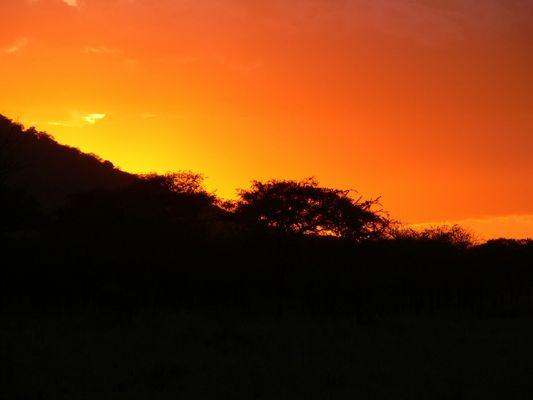coucher de soleil sur le seringeti