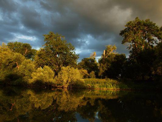 Coucher de soleil sur les bords de Seine à Muids (Eure)