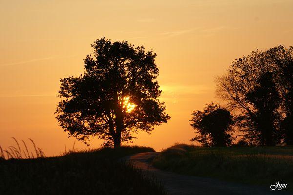 Coucher de soleil sur nos routes de campagne.