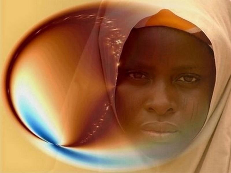 Couleur du Niger