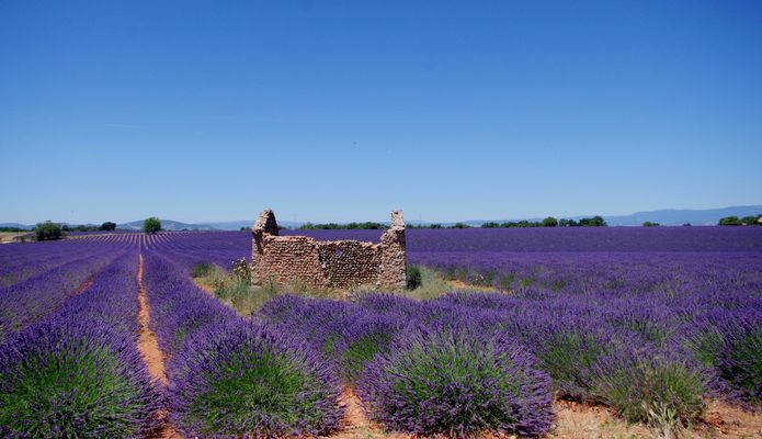 Couleur Provence ....