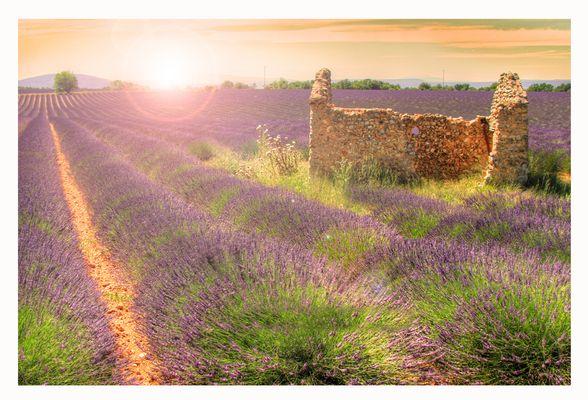Couleur Provence