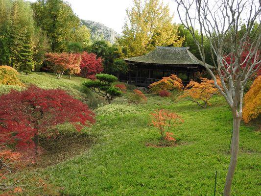 couleurs d'automne anduze gard