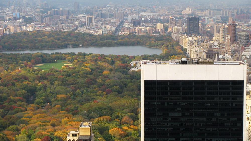 couleurs d'automne sur Central Park