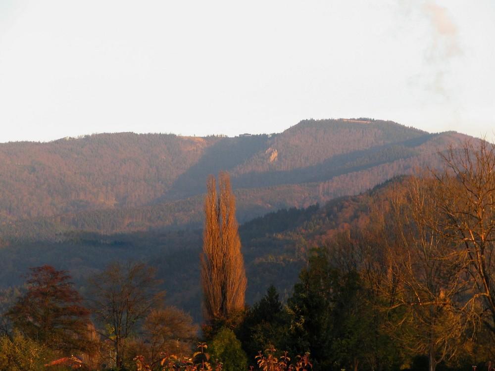 Couleurs d'automne sur Mont Kandel - '7'