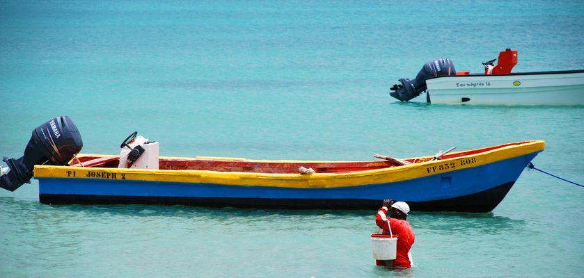 Couleurs marines - La Martinique