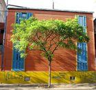 couleurs vives de la boca