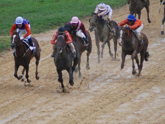 course Pompadour