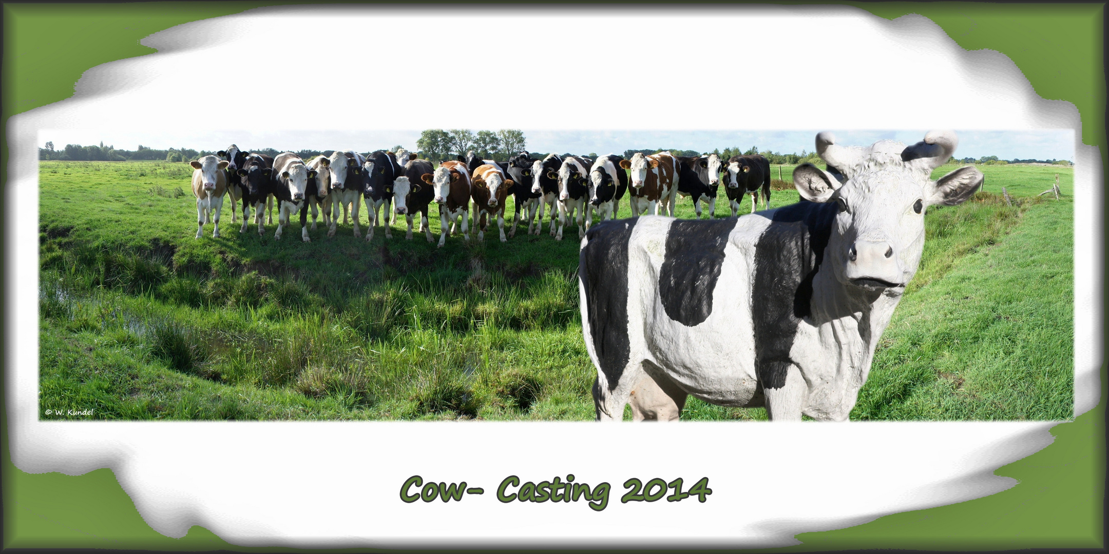 Cow-casting 2014 - Silicone wins