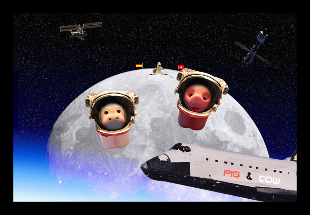 cow & pig AS astronauts