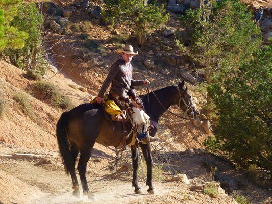 Cowboy am Brice Canyon