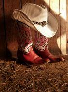 Cowboystiefel-Hut-Pferd