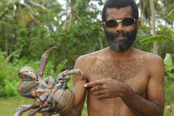 Crabe de cocotier attrapé par un Kanak de l'île d'Ouvéa