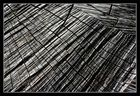 cracks and furrows