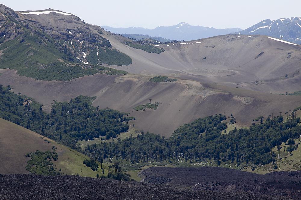 Crater Navidad 1