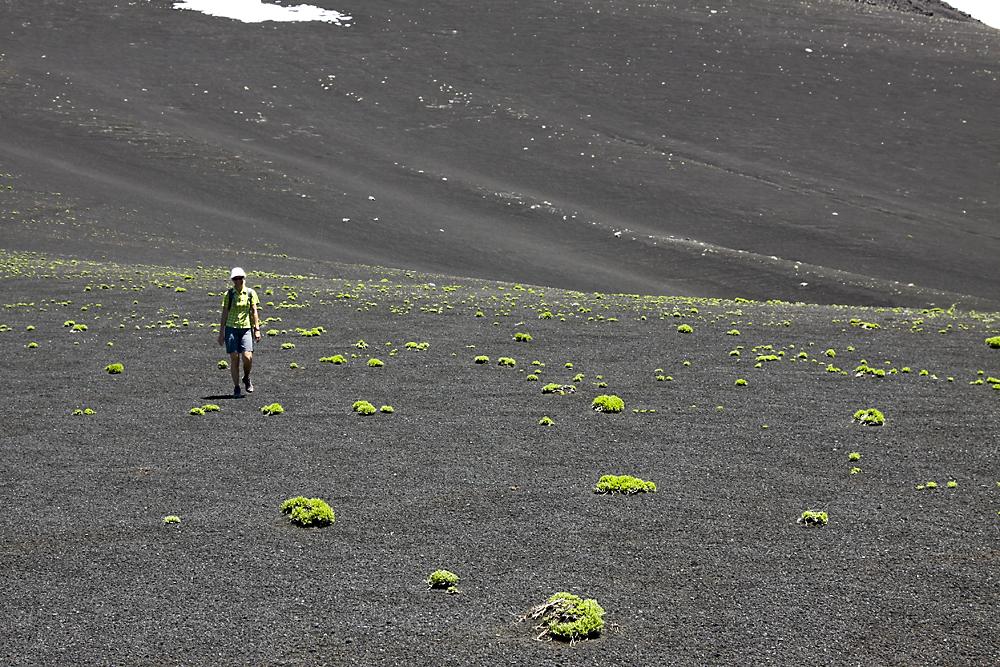 Crater Navidad 2