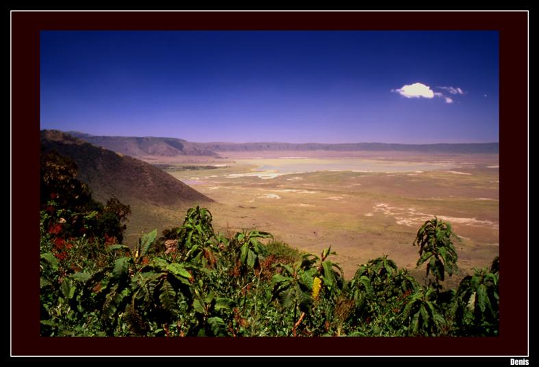 ...Cratère du N'Gorongoro...