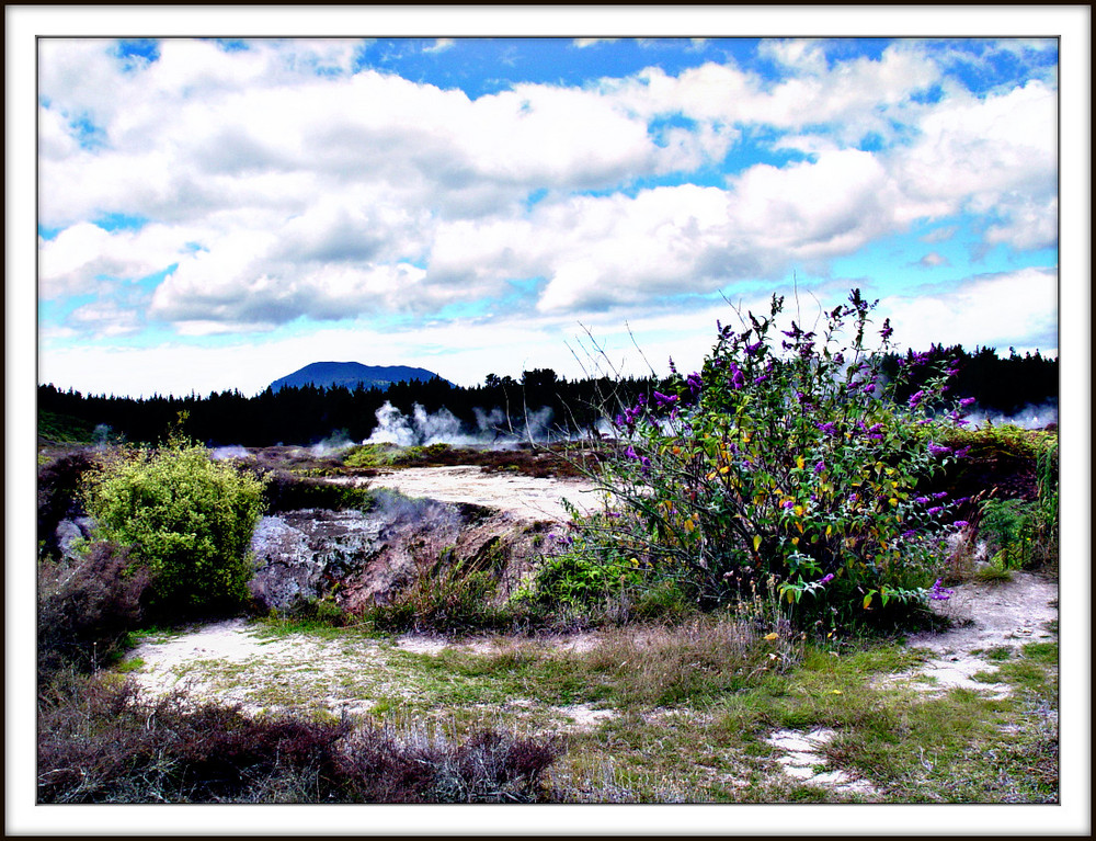 Craters Of The Moon, New Zealand
