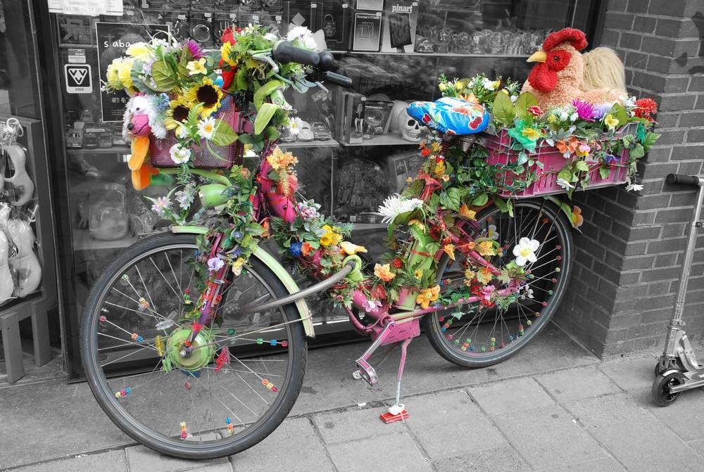 Crazy Chicken Bike