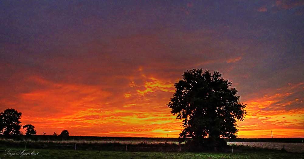 Crépuscule en automne