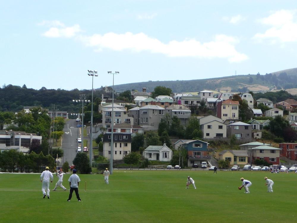 Cricket jeden Tag
