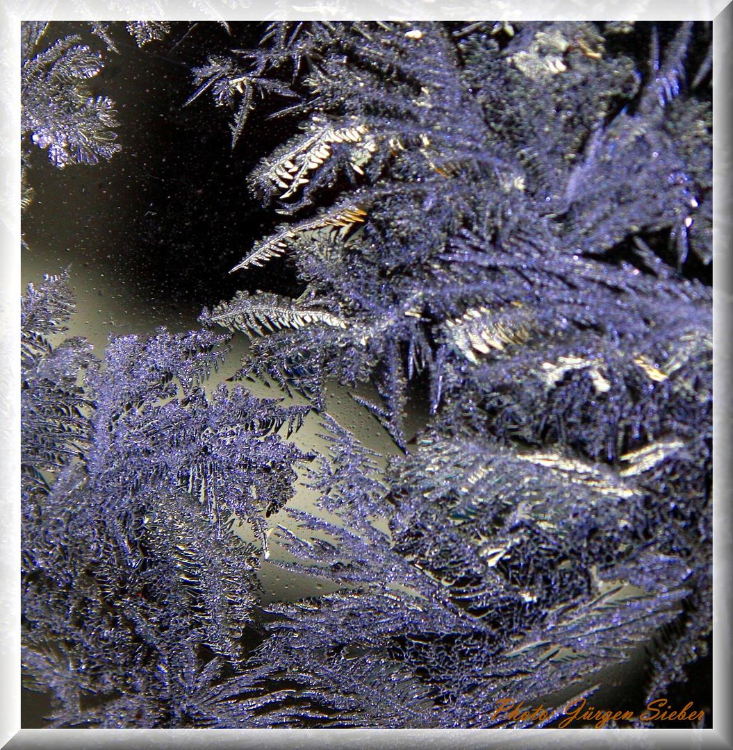 Cristal de glace  /  Eisblume