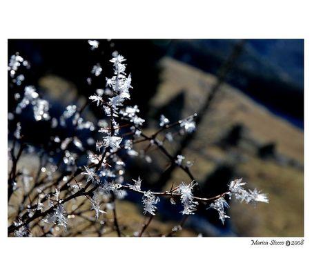 Cristalli di ghiaccio