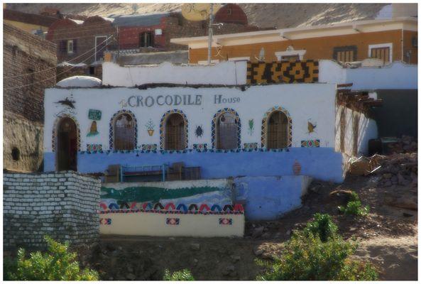 Crocodile House