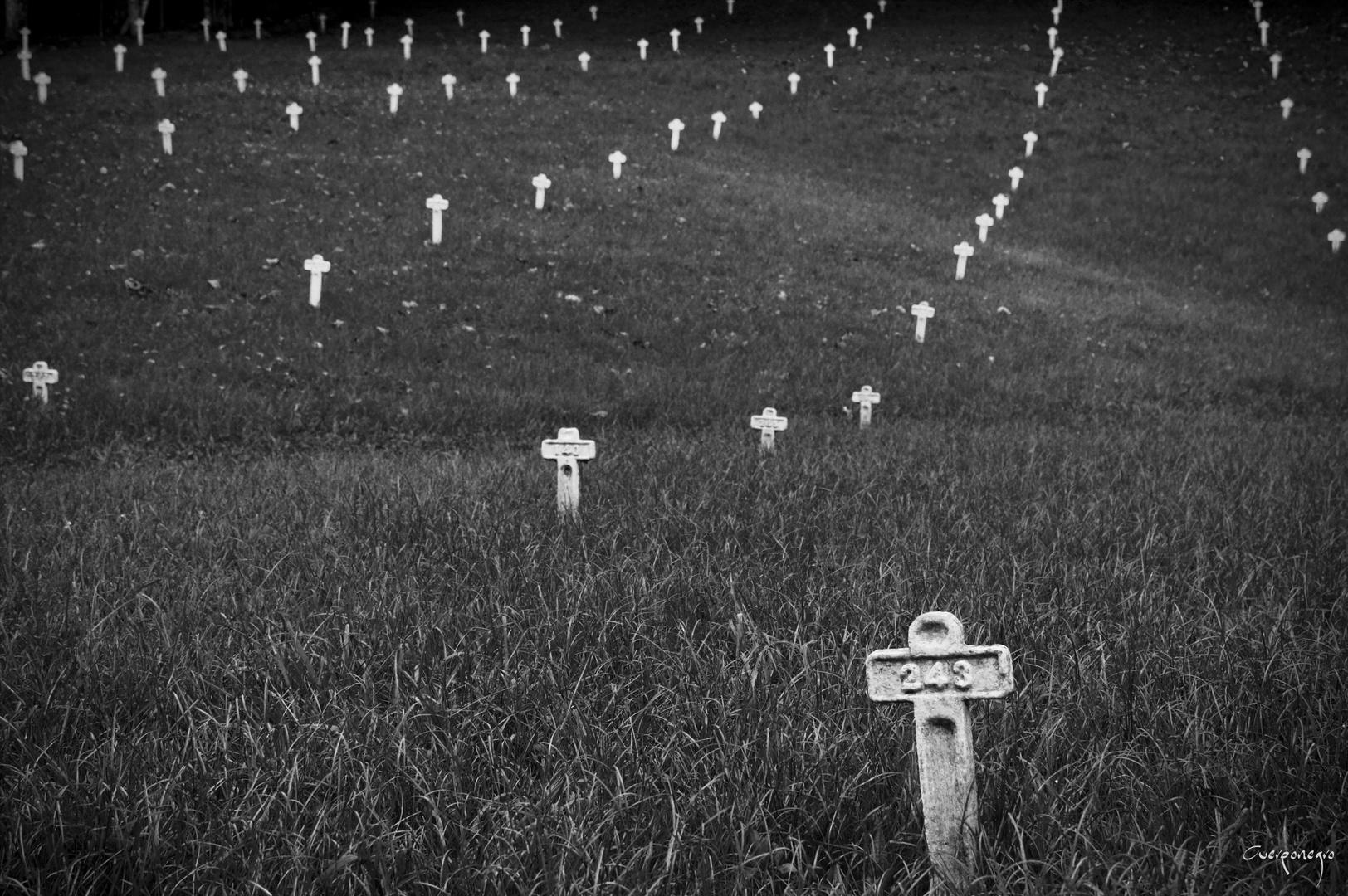 Cross of memories