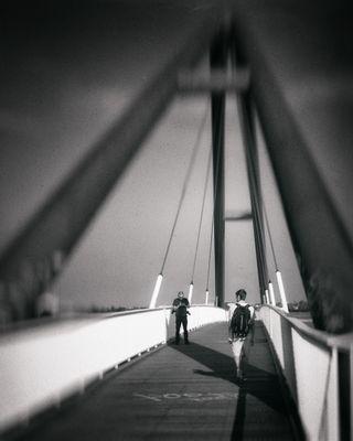 cross that bridge 2016