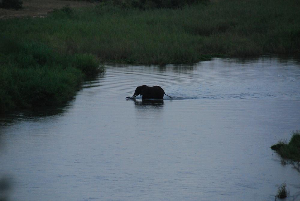Crossing Crocodil River