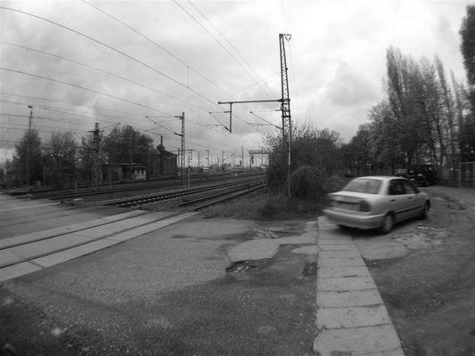 Crossing Road`s