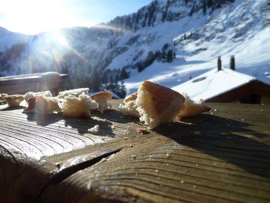 Croutons de pain