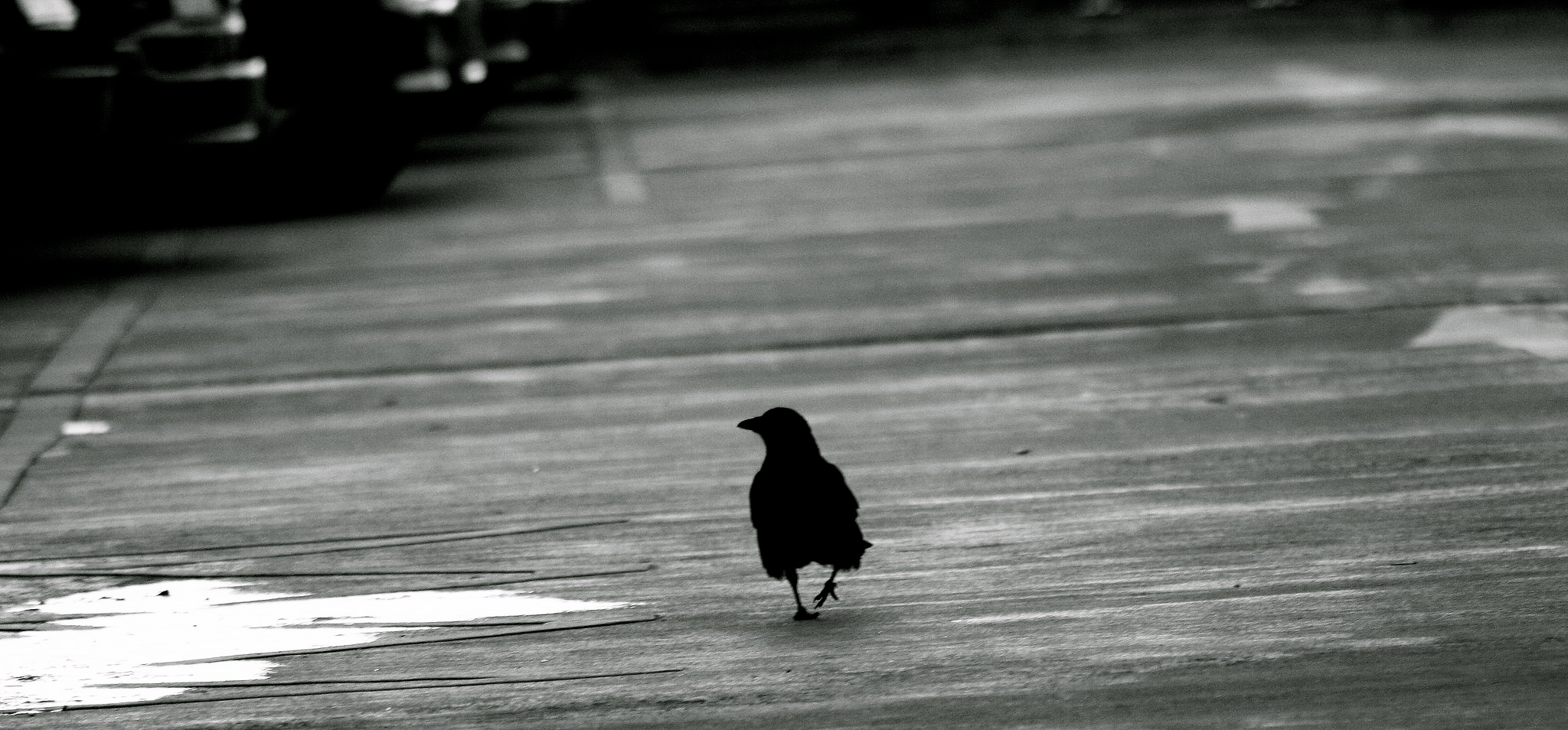 crow-walk